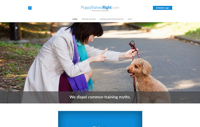 Puppy Trained Right Website Design by CMSIntelligence