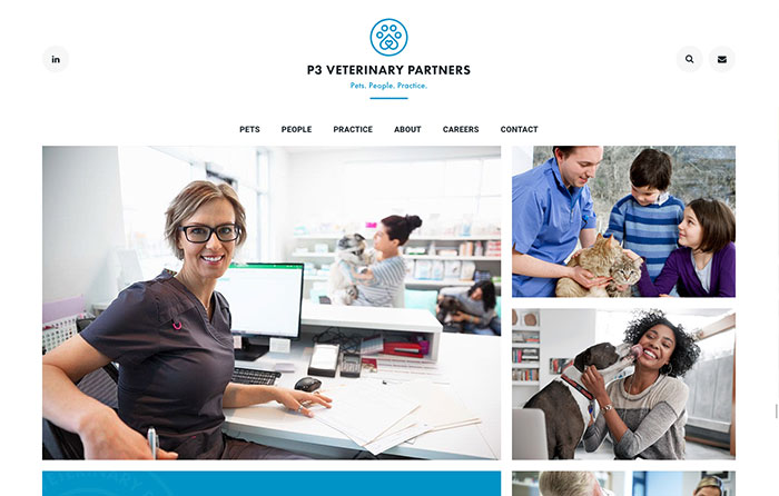 P3, Turn-Key Website Design, CMSIntelligence inc.
