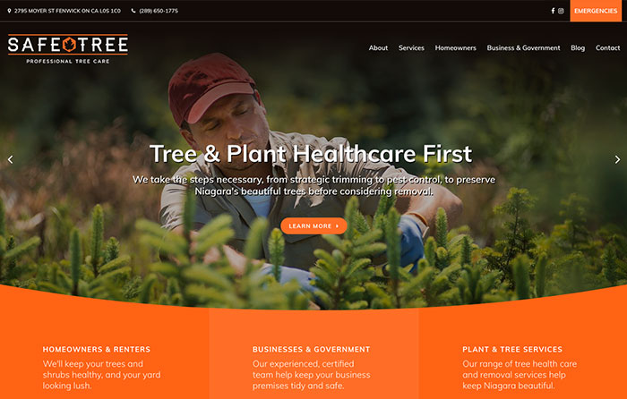 Safe Tree, Turn-Key Website Design, CMSIntelligence inc.