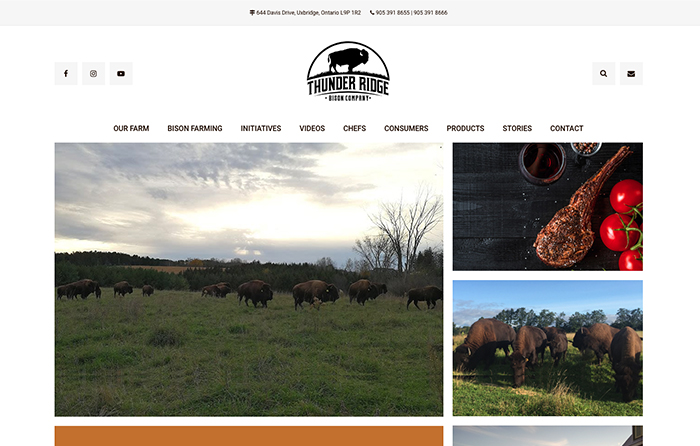 Thunder Ridge Bison Co., Turn-Key Website Design, CMSIntelligence inc.