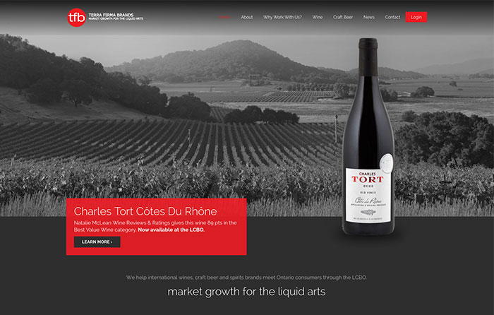 Terra Firma Brands Website Design by CMSIntelligence